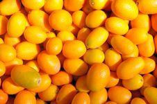 Free Ripe Kumquat Royalty Free Stock Photo - 15367215
