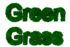 Green Grass Royalty Free Stock Images