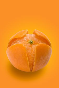 Tangerine And Peel 2 | Clipping Paths Royalty Free Stock Photos