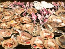 Free Seafood At The Market Stock Photography - 15372532