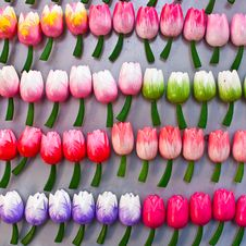 Free Tulips Made Of Wood Stock Photo - 15373490