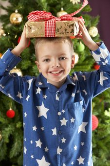 Free Boy Holding Wrapped Present In Front Of Tree Royalty Free Stock Photos - 15376148