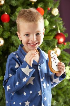 Free Young Boy Eating Cookie In Front Of Christmas Tree Stock Photo - 15376210