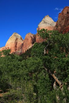 Free Zion National Park 4 Royalty Free Stock Photo - 15376365