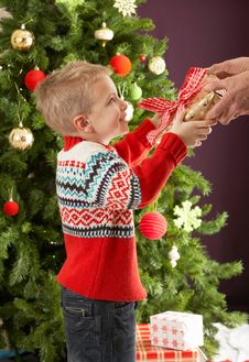 Free Boy Holding Present In Front Of Christmas Tree Royalty Free Stock Photography - 15376367
