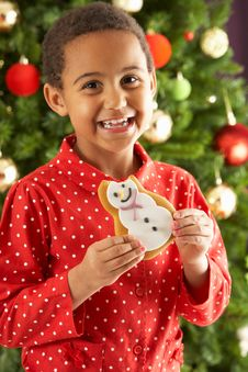 Free Boy Eating Cookie In Front Of Christmas Tree Stock Photography - 15376552