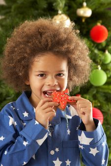 Free Young Boy Eating Cookie In Front Of Christmas Tree Stock Photos - 15376913