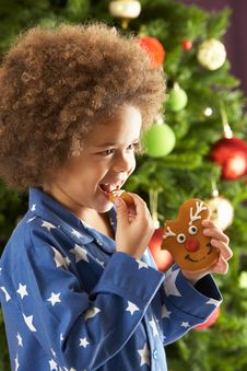 Free Young Boy Eating Cookie In Front Of Christmas Tree Royalty Free Stock Photos - 15376978