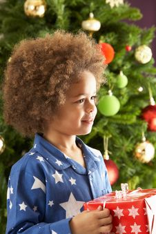 Free Boy Holding Gift In Front Of Christmas Tree Royalty Free Stock Photography - 15377007