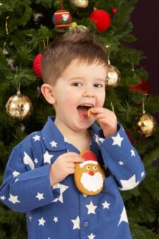 Free Boy Eating Cookie In Front Of Christmas Tree Stock Photography - 15377452