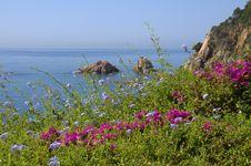 Free Blanes Coast, Spain Stock Photos - 15377653