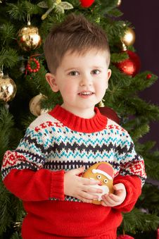 Free Boy Eating Cookie In Front Of Christmas Tree Stock Images - 15377684