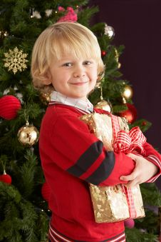 Free Young Boy Holding Gift In Front Of Christmas Tree Stock Images - 15377754