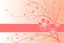 Free Floral Card Stock Photography - 15377822