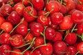 Free Sweet Cherry Background Stock Photo - 15385590