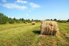 Free Hay In Stack Royalty Free Stock Photography - 15381777