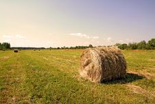 Free Hay In Stack Royalty Free Stock Photography - 15381917