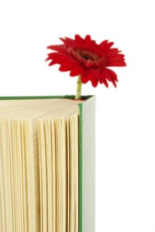 Book With A Red Flower. Royalty Free Stock Photos