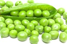 Free Fresh Green Peas Stock Images - 15385594