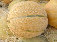 Free Melon Stock Photography - 15388532