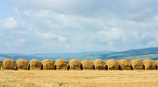 Straw Stacks On The Meadow Stock Photos