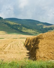 Straw Stacks On The Meadow Royalty Free Stock Photo