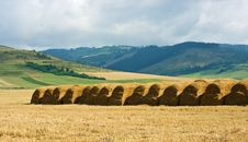 Straw Stacks On The Meadow Stock Images
