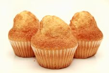 Free Muffins Stock Images - 15389244