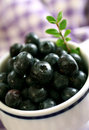 Free Blueberry In White Cup Stock Image - 15399231
