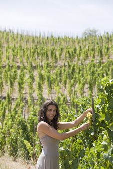 Free Woman With Grapes Royalty Free Stock Image - 15390026