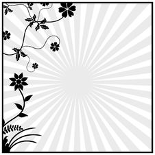 Free Floral Elements Black Royalty Free Stock Photography - 15390177