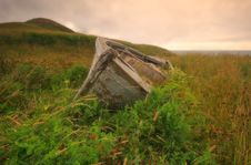 Free Abandoned Boat In Grass Royalty Free Stock Image - 1542006
