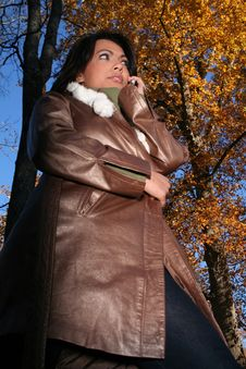 Free Autumn Scene Fall Woman With Cell Phone Stock Image - 1543761