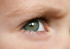 Free Eye Royalty Free Stock Image - 1543846