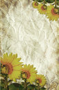 Free Texture Of The Crushed Paper With Sunflowers Stock Photos - 15407543