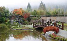 Free Autumn Japanese Garden Royalty Free Stock Photography - 15401027