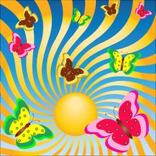 Free Butterflies Welcome The Sun Stock Photos - 15402313