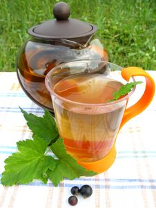 Free Fruit Tea With Currant Extract Outdoors Royalty Free Stock Image - 15404366