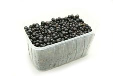 Free Fresh Blueberries Stock Images - 15405774