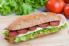 Free Fresh Sandwich Stock Photography - 15405822