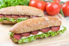 Free Big Sandwich Royalty Free Stock Photo - 15405925