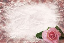 Free Texture Of The Crushed Paper With A Rose Royalty Free Stock Photography - 15407597