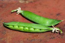 Free Green Peas Royalty Free Stock Photos - 15408688
