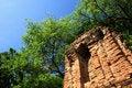 Free Sukhothai Historical Park Stock Images - 15414614