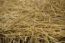 Free Straw Background Stock Images - 15411614