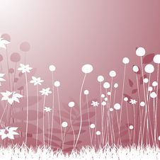 Free Floral Design Royalty Free Stock Image - 15419836