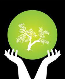 Free Human Hands Caring Tree Royalty Free Stock Image - 15421356