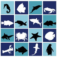 Free Marine Life Set Royalty Free Stock Photography - 15421457
