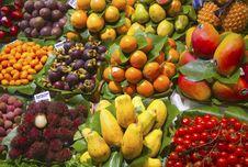 Free Fruit Royalty Free Stock Photos - 15422808