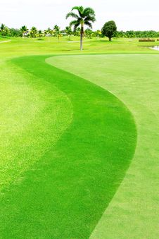 Free Green Golf Course Royalty Free Stock Images - 15423079